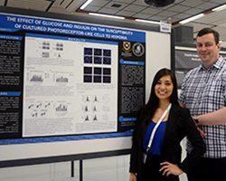 International Research Award for LVF Scholar